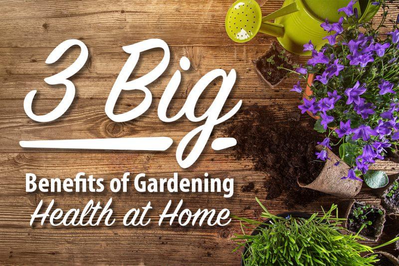 kids learn by Gardening