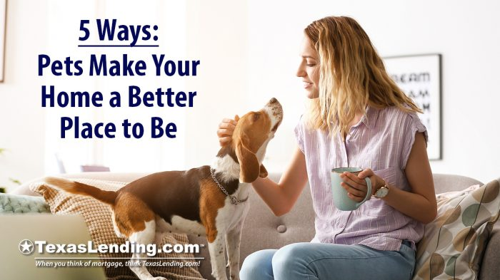 Pets make your home a better place to be
