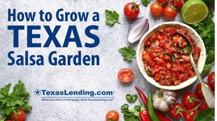 Texas Salsa Garden